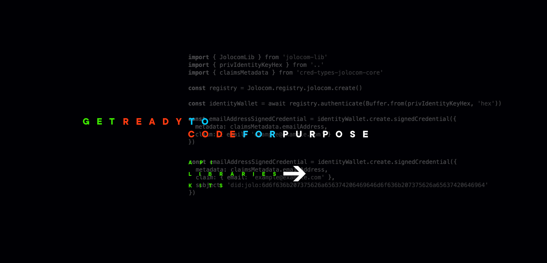IPDB hackathon brand identity dev docs